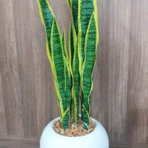 Plante artificiel RF:P14 _Décoration -Tunisie