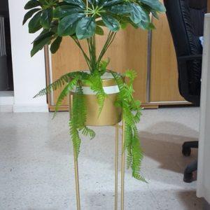 Plante artificiel : RF:P5_Décoration-Tunisie